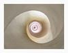 Spiral look upwards (K.H.Reichert [ not explored ]) Tags: stairs wendeltreppe sightseeing architektur spain tower spiral architecture spiralstaircase santacatalina valencia turm treppe valència comunidadvalenciana spanien es