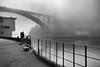 Foggy morning (Francisco (PortoPortugal)) Tags: 2392017 20171003fpbo6285 pontedaarrábida arrábidabridge riodouro douroriver nevoeiro fog bw nb pb paisagem landscape porto portugal portografiaassociaçãofotográficadoporto franciscooliveira