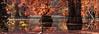 La mare aux fées. (Grozibou38) Tags: nature landscape paysage automne automn arbre trees nikon d90 dauphiné isere 50 f18 af5018d