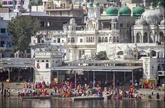 Holy bathing (bag_lady) Tags: 2016camelfair pilgrims bathing holylake holywater holybathing rajasthan india pushkarlake buildings architecture devotion hinduism hindus worship religion