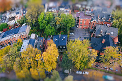 Flying Above Autumnal Miniature Town (Katrin Ray) Tags: flyingaboveautumnalminiaturetown november autumn fall yellow green red trees jarvismansiondistrict miniaturestyle digimagic toyrontolife toyland colours maple ash elm ontariotrees downtown toronto ontario canada katrinray dreamscapesoftoronto tiltshift canon eos rebel t6i 750d planetary planet littleplanet planetoid