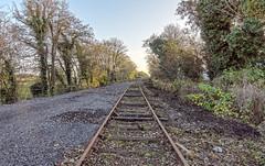 Abandoned (@JohnA390) Tags: railway abandoned kiltimagh mayo tracks sleepers dof