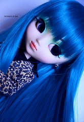 New hair, new life   Pullip Prunella (·Kumo~Milk·^^) Tags: pullip prunella aqua rewigged wig rechipped eyechips eyelashes gloss obitsu junplanning groove