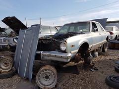 1977 Plymoth Volare (dave_7) Tags: 1977 plymoth volare car junkyard scrapyard