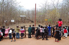 """Education at Lilongwe Wildlife Centre • <a style=""""font-size:0.8em;"""" href=""""http://www.flickr.com/photos/152934089@N02/23761304578/"""" target=""""_blank"""">View on Flickr</a>"""