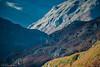 Langdale Pikes (DJNanartist) Tags: nikond750 nikon28300mm lakedistrict anartist grasmere langdale sheep