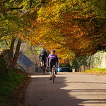 Autumn-ride thumbnail