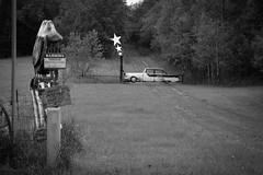 Chisago County, Minnesota USA 20170920-DSC03090 (Shoeleather Media) Tags: chisagocounty minnesota roadside roadsideattraction ruralviews gate gateway stars