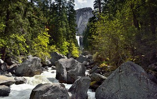 The Merced River and a Setting of Trees and a Mountain Backdrop (Yosemite National Park)