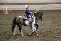 Horse Show (demeeschter) Tags: usa new york state fair syracuse city town attraction market games rides livestock animals farm food show