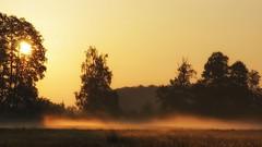 Autumn sunrise (pszcz9) Tags: polska poland przyroda nature natura wschódsłońca sunrise mgła fog pejzaż landscape jesień autumn beautifulearth słońce sun dolinabaryczy baryczvalley sony a77 drzewo tree