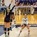PSU #15 Haleigh Washington hitting