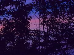 Sunset 20150815 (caligula1995) Tags: 2015 clouds plumtree sisters smoke sunset
