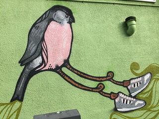 Bobzilla Bullfinch