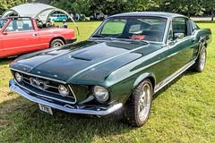 Ford Mustang GT (John Tif) Tags: 2017 crystalpalace fordmustang car motorspot