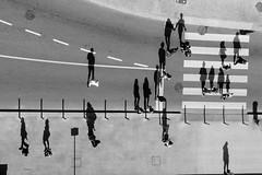 Shades (Ramy.) Tags: shades blackandwhite bw black white sombras hombres bike bikers bicicleta velos oporto porto portugal micro four thirds 45200mm 45200f4056 lumix gx7 mirrorless digital trinity monochrome