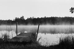 Edit -1-6 (Dane Van) Tags: minolta xg1 50mmf2 ilford hp5 atlantamichigan sunrise fog lake dock blackandwhite lakegeneva ccr canadacreekranch analog