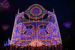 IMG_0360 (AndyMc87) Tags: ilumination lights travel night dark blue hour stars tree iron christmas holiday singapore singapur