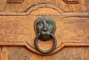 D71_0156A (vkalivoda) Tags: details klepadlo doorknocker doors dveře detail smallobjects wood leo lev hlava circle metal türbeschläge