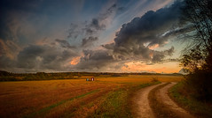 Country Road (Topolino70) Tags: nokia lumia 930 mobile sunset country field road sky cloud scenery siuntio finland