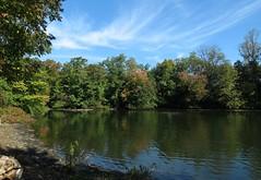 IMG_9473b (Naturecamhd) Tags: canonpowershotsx60hs sx60hs newyorkbotanicalgarden nybg twinlakes botanicalgarden green eco nature trees fall autumn bronx thebronx