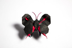 Butterfly (Djangorigami) Tags: raphaelmaillot origami paper art butterfly black purple red white fly insect lady wings poetry