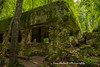 Wolf's Lair Bunkers, Poland (Anna Calvert Photography) Tags: poland polska forest trees nature landscape wolf'slair hitlers lair nazi bunkers secondworldwar german gierloz ketrzyn