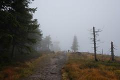 DSCF4628 (Jakub Lewandowski) Tags: beskidy babia góra mountains poland polska jesień automn