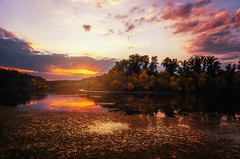 Autumn sunset (Pásztor András) Tags: nature landscape pond lake sunset sun light water reflection tree leafs clouds sky red yellow brown blue colors mood rural 18mm dslr nikon d5100 hungary andras pasztor photography 2017