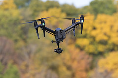Looking at You (player_pleasure) Tags: inspire 2 pro drone ariel propel autumn fall colors shallowdof