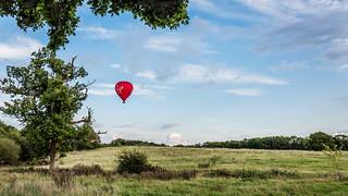 Along came a balloon