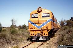 2622 XB1017 10km Nannup Line 16 December 1981 (RailWA) Tags: railwa philmelling westrail 1981 xb1017 10km nannup line