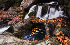 (Appalachian Hiker) Tags: autumn fall cascade waterfall stream creek leaves leaflitter