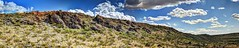 Ridge of Palo Duro Canyon (JoelDeluxe) Tags: sevilletanationalwildliferefugelospinosmountainspalodurocanyonarroyodetorrezamigosdelasevilletaoctober21 2017celebratesevilletafriendsofsevilletalandscapepanoramahdrnewmexiconmgrassskycloudscreosotebushjoeldeluxe sevilleta october21 2017 joeldeluxe