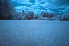 Park an der Ilm (TW-10) Tags: weimar thüringen deutschland ilm park römisches haus 720 nm infrarot nikon d 750