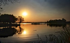 Reflections On The Nile .. (Hazem Hafez) Tags: nile river landscape sun sunset trees foliage water silouette sky reflection calmness quiet serenity