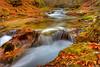 Magic (Luciano Silei - sky7) Tags: arzino river autumn autunno colors longexposure ndfilter lucianosilei waterfall water foliage canon7d canon1740mm friuli