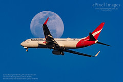 "Qantas Boeing 737-838 Reg. VH-XZO ""Leichhardt"" crosses the Waxing Gibbous Moon (ePixel Aerospace) Tags: qantas boeing boeing737838 vhvzp leichhardt waxinggibbousmoon aircraft sky blue brisbane flight qf540 qantasairways boeinglovers boeing737 bne moon aviation aviationphotography planespotting avporn aviationporn planeporn aviationgeek planegeek avgeek aviation4u airplanelovers airplane planespotter"