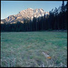 Cascade Meadow (Eason Zhang) Tags: hasselblad500cm e100vs canadianrockies carlzeiss