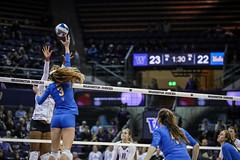 UW UCLA-FT4I1744 (Pacific Northwest Volleyball Photography) Tags: volleyball ncaa pac12 pac12vb uwhuskies washington ucla