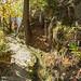 2017-10-27 11-01 Südtirol 197 Schnalstal, Tscharser Waalweg