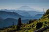Mount Adams (Stones 55) Tags: mountsthelensnationalvolcanicmonument mshnvm giffordpinchotnationalforest mountadams volcano stratovolcano haze smoke cascaderange washington pacificnorthwest skamaniacounty tamron16300mmdiiivcpzdmacro tamron16300mm nikond3200 lightroom5