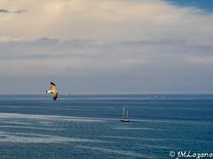 por cielo, mar y desde tierra (josmanmelilla) Tags: melilla mar azul cielo nubes pwmelilla pwdmelilla flickphotowalk pwdemelilla sony españa