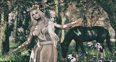 Forest.. (bewitcheddifference) Tags: unitedcolors uberevent cosmopolitan lode fitted mesh sexy flirty nightwear