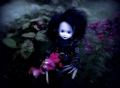 The perfect Gardener (pianocats16) Tags: edward scissorhands living dead doll tim burton movie figure garden roses autumnal mood