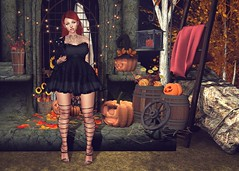#916 (AddisonLynnRose Resident) Tags: second life sl virtual photography halloween fall autumn fashion runaway hairology catwa maitreya bento swallow atelier pepe tattoo mania littlefish furtacor mila poses