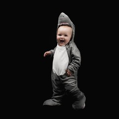 Shark Attack (Oliver Leveritt) Tags: nikond610 afsnikkor2470mmf28ged oliverleverittphotography flash speedlight yongnuo yn568ex speedlite su800 su800wirelessspeedlightcommander cls nikoncls creativelightingsystem offcameraflash photek softlighter portrait child boy toddler halloween costume shark softbox blackbackground
