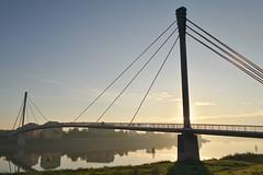 "Most ""Sv. Irineja"" (Aleksandar Dragićević) Tags: morning sunrise river serbia autumn fog november"
