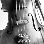 Black and white violin close-up thumbnail