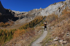 ma soeur (bulbocode909) Tags: valais suisse tzeusier montagnes nature automne forêts arbres paysages sentiers bleu jaune